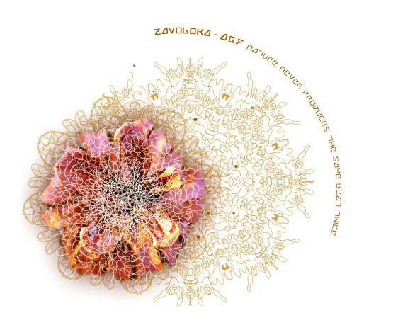 zavoloka-agf-frame-cover.jpg