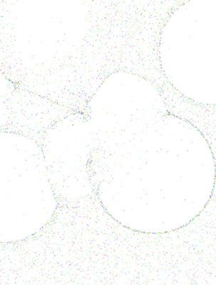 web_chromatische_aberration2_klein.jpg
