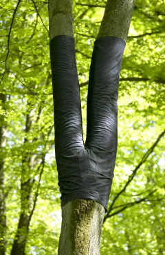 Binary tree upside down