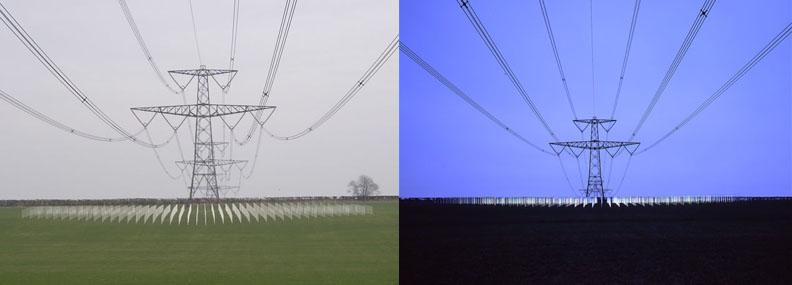field.jpg