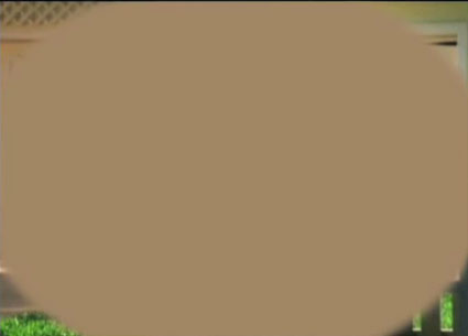 blottedcircle.jpg