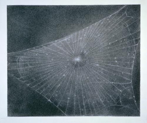 celmins-web-1